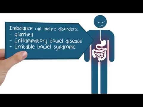 Gut Microbiota for Health World Summit 2015 animation