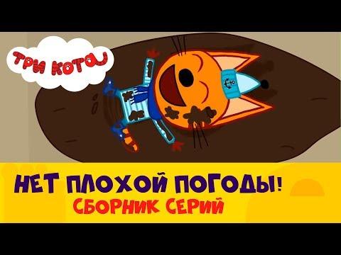 Три кота   Плохая погода? Не, не слышали! 🌧🌞🌨 Сборник серий   СТС Kids