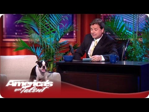Todd Oliver and His Talking Dog - America's Got Talent Semifinals