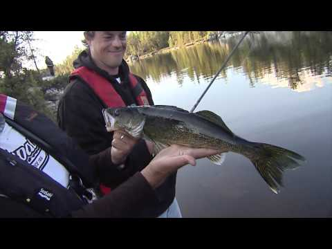Csf 30 04 Wilderness Walleye, Red Pine Wilderness Lodge, Lady Evelyn Lake, ON. YouTube 4K