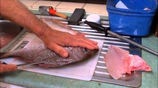 How to Gut,Gill & Fillet a RED / PINK SNAPPER - PORGIE. thumbnail