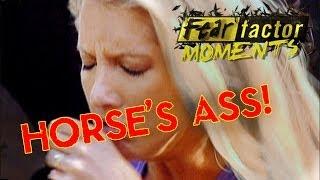 Fear Factor Moments   Horse Rectum