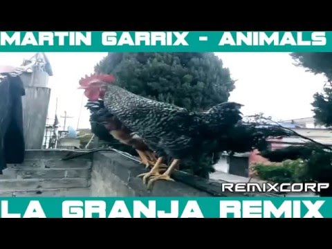 Martin Garrix - Animals (La Granja Remix)