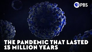 The Pandemic That Lasted 15 Million Years