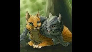 Коты Воители - Клип Я не сплю я живой
