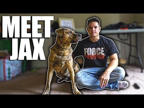 Meet JAX!