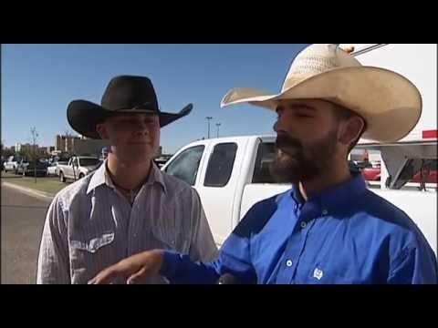 TEXAS TECH RANGE HORSE TEAM  HELPS CATCH ESCAPED COWS