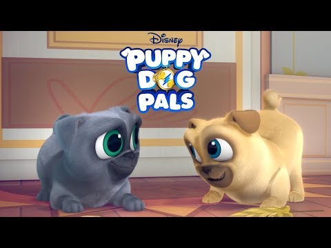 Going On a Mission: Extended Music Video   Puppy Dog Pals   Disney Junior
