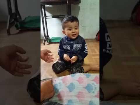 Anak Kecil Niru Suara Binatang Lucu Banget