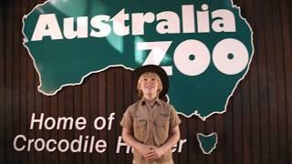 Australia Zoo's Jurassic Dinosaur Hunt these Holidays!