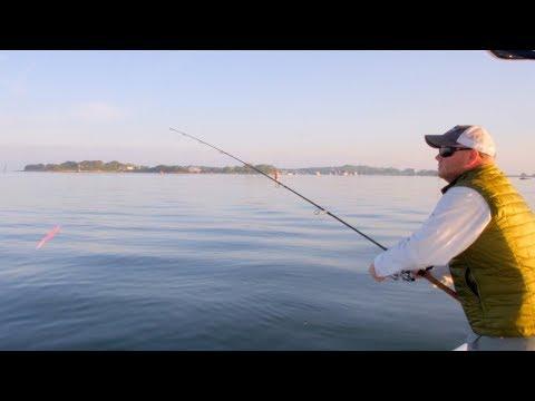 Falmouth & Martha's Vineyard Video Fishing Report - May 30, 2018