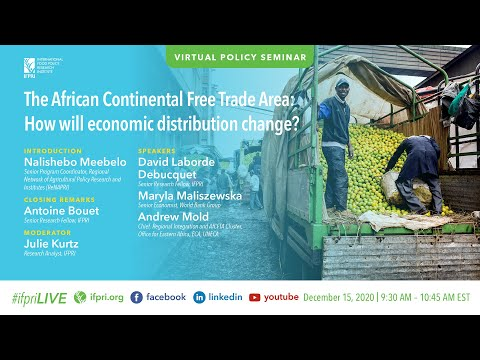 The African Continental Free Trade Area: How will economic distribution change?