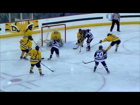 HIGHLIGHT   Women's Hockey vs. New Hampshire (1/26/18)