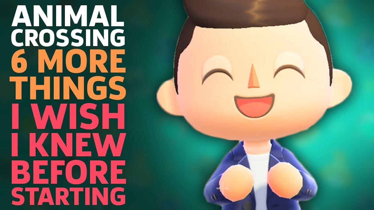 6 More Things I Wish I Knew Before Starting Animal Crossing: New Horizons - GameSpot