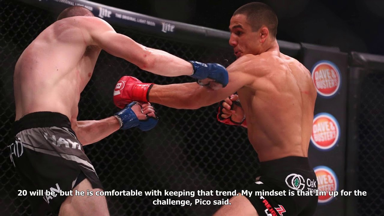 0abf45d664e Aaron pico -  that knockout was a message to everyone in this division