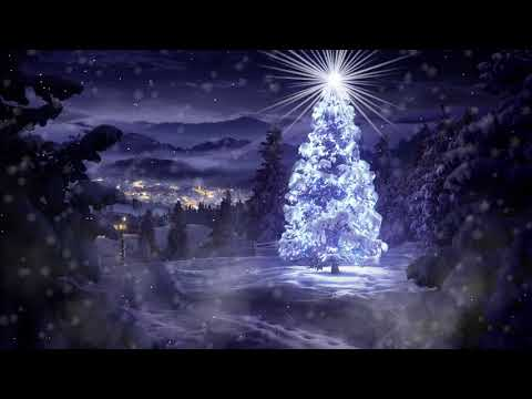 Wow Christmas 2021 Youtube The Most Beautiful Christmas Tree In The World For The Year 2021 Wow Youtube