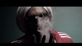 Watch Snoop Lion Smoke The Weed video