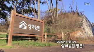 앱솔루트 유기농궁 안심원칙 영상