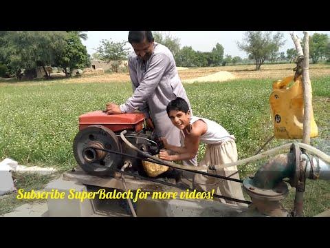 | Agriculture and Farming Life in Pakistan | الزراعة والحياة الزراعية في باكستان |