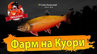 Русская рыбалка 4 Фарм Куори Голец Куорский