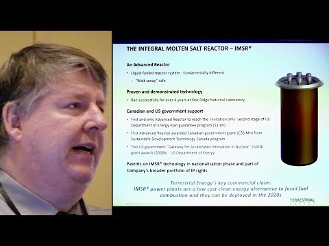 Integral Molten-Salt Reactor [IMSR] Update - Dr. David LeBlanc of Terrestrial Energy @ TEAC8