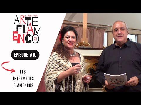 [ Épisode 10 ] Les Rendez-vous Arte Flamenco, c'est aussi des Intermèdes flamencos