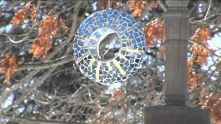 Glass Mosaic Circle Fly-thru Bird Feeder W/ Hanging Wire By Evergreen With Carolyn Gracie
