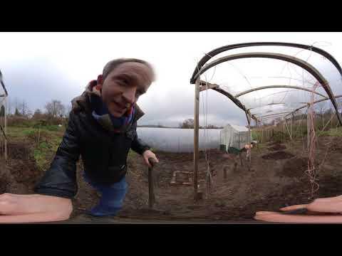 Garten in 360 Grad | Folge 1 kleine Dezember Ernte
