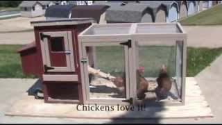 Amish Made Miniature Chicken Coop