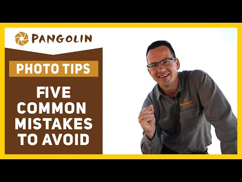 5 common wildlife photography MISTAKES.