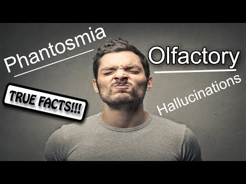 Phantosmia: True Facts About Olfactory Hallucinations