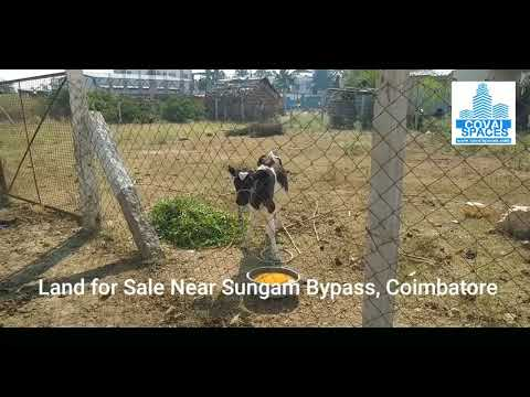 Land for Sale Near Sungam Bypass, Coimbatore - Covai Spaces