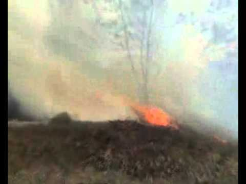 นาย สุรพล เธียรสูตร นายกเทศมนตรีเมืองน่าน รุดตรวจไฟไหม้ป่าคาดถูดเผาทำไรที่ อ นาน้อย