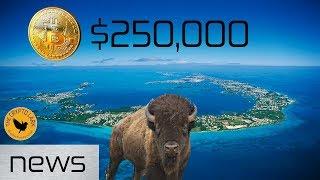 bitcoin amp cryptocurrency news bitcoin 250 000 bermuda wants crypto biz amp skin wallets