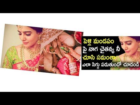 Samantha chai marriage sandadi in Goa rana daggubati akhil   nagarjuna   venkatesh   ntr   amala