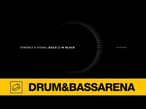 Synergy & Signal - In Black