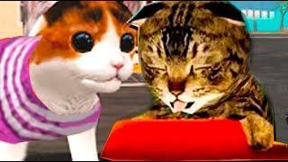 💓СИМУЛЯТОР Маленького КОТЕНКА #13 виртуальный питомец смешная мульт игра видео для детей Валеришка