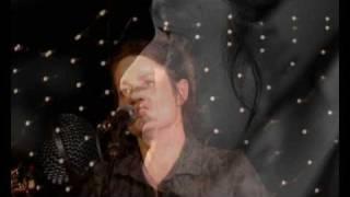 Gambar cover Evangeline - The Johnny Possum Band