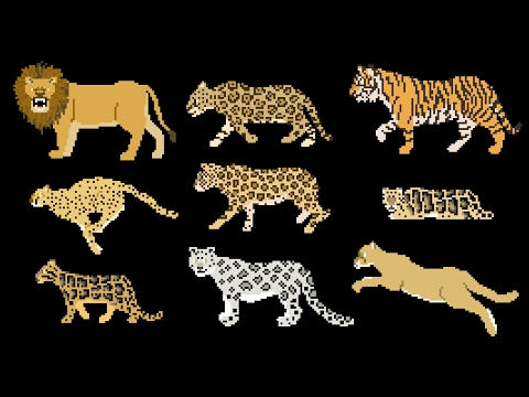 Big Cats - Animals Series - Lion, Tiger - The Kids' Picture Show (Fun &  Educational Learning Video)