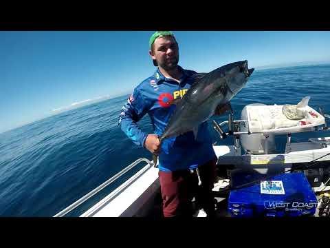 Bluefin Tuna and BIG Auzzie Salmon Offshore!