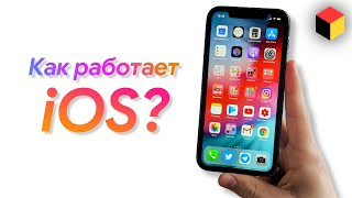 How to use an iPhone? Complete iOS overview for new users!