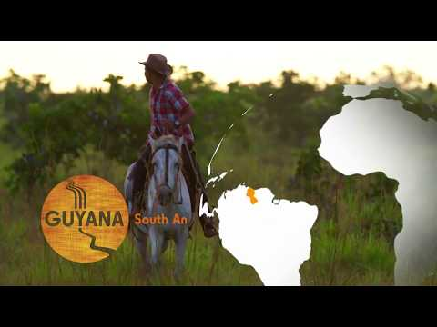 Guyana Destination Video - Wildlife