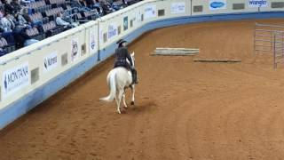 2015 aqha world show amateur ranch riding finals go