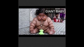 Bayi umur 8bln berbobot 17kg BESAR BANGET