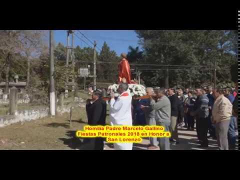 Homilía Padre Marcelo Cacho Gallino