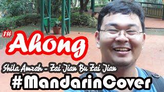 mandarincover zai jian bu zai jian ahongpheng original by 茜拉 shila amzah 再见不再见