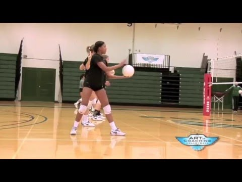 volleyball serve mechanics Biomechanics of volleyball and technique of the students over arm volleyball serve after the use of biomechanical and fluid mechanics.