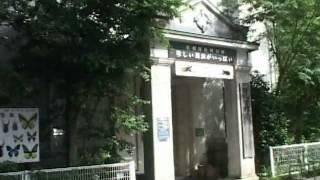 岐阜公園 金華山麓に有る、歴史の有る名和昆虫博物館です。 岐阜公園・...