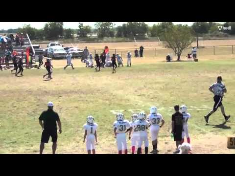 Commerce Youth Football Association Tigers