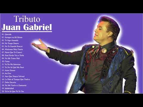 Juan Gabriel Sus Grandes Exitos || Las Mejores Canciones De Juan Gabriel